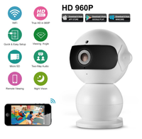IP-камера Sannce NS2, 960p, Wi-Fi, microSD, вращение 360 гр, ночной режим, белый