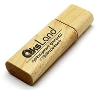 Память USB 2.0 Flash, 32GB, BiNFUL, дерево, wood №1, mapple wood