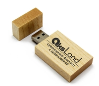 Память USB 2.0 Flash, 32GB, BiNFUL, дерево, wood №8, wood