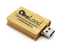 Память USB 2.0 Flash, 32GB, BiNFUL, дерево, wood №9, wood