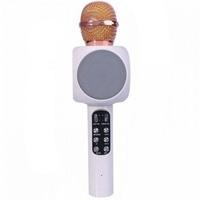 Портативный микрофон караоке, WSTER WS-1816-1, Bluetooth, USB, FM, AUX, FT